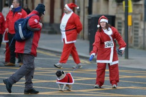 Dog's Santa Claus running for New Year 2015